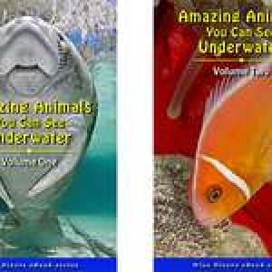 New E-Books: Amazing Animals You Can See Underwater, Vols. 1&2