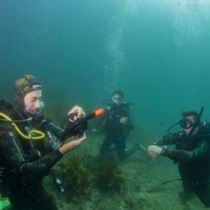 Easing back into scuba diving