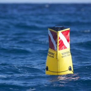 Would A 'Diver Down' Buoy Help Keep Divers Safer Than Just A Flag?