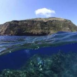Mission Blue Recognizes Azores As A 'Hope Spot'