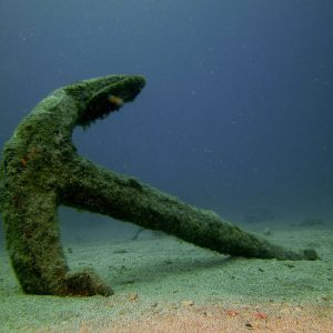 The History of Diving Museum In Florida Is Hiring