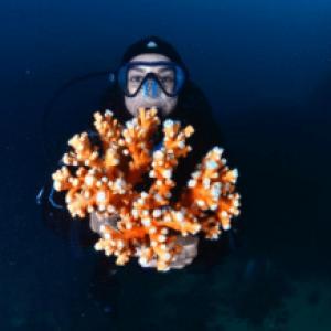 Coral Nursery Installed On Spain's Mediterranean Coast
