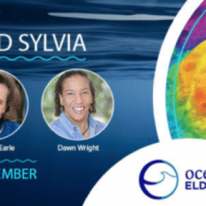 Dawn Wright Featured on Dive In With Liz and Sylvia Podcast