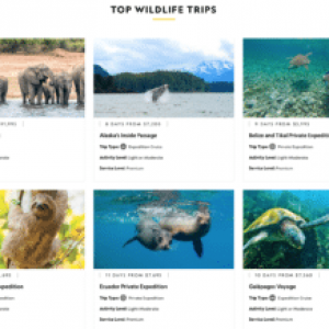 National Geographic Expeditions Forges Ahead With Trips To A Whole Bunch of Destinations