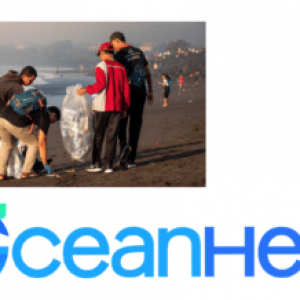 The OceanHero Search Engine Funds the Recovery of More Than 21 Million Ocean-Bound Plastic Bottles