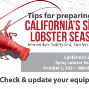 DEMA Releases California Lobster Season Poster