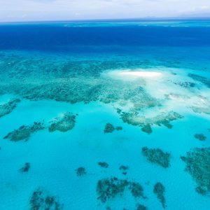 UNESCO Votes Not To Reclassify The Great Barrier Reef