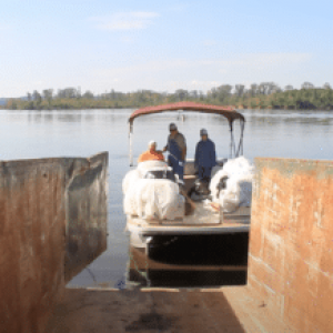 Lake Allatoona Clean-up Effort Conducted By Local SSI Centres