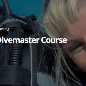 New PADI Divemaster Course Offerings: Introduction to Divemaster, Divemaster eLearning and Divemaster Digital Crewpak
