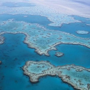 Help Stop A Coal Mine Next To The Great Barrier Reef Heritage Area