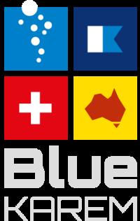 BlueKAREMだいぶプロフェッショナル情報サイト