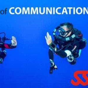 Communicating with Hand Signals