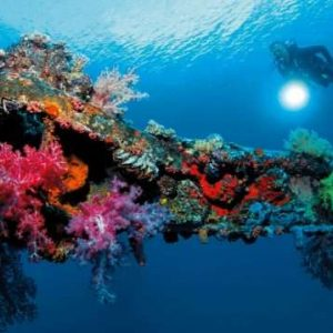 Wreck Diving in Micronesia: 8 Great Wrecks for every Diver