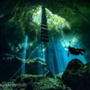 Wetpixel/Under The Jungle Cenote Workshop 2021