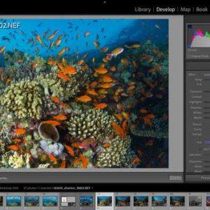 Adobe Releases Lightroom Version 11.0