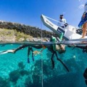 Video: Alice Modolo First French Woman to Realise a Freediving World Record