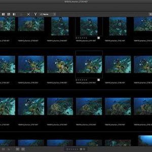 Nikon Releases Studio NX