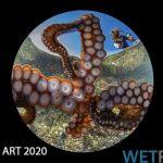Ocean Art 2020: Results